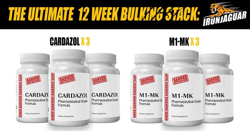 the best sarms bulking stack